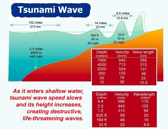 tsunami speed and facts